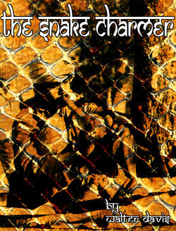 The Snake Charmer - Walter Davis