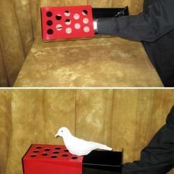 Amazing Dove Box - Illusion