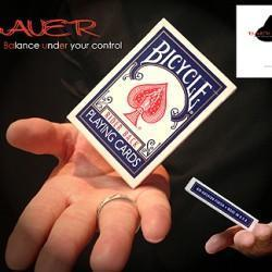 Bauer (Balance Under Your Control)