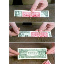 Michael Close Dollar Bill - Exclusive