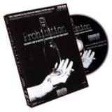 Prohibition (Justice) - DVD