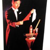 Salvano - Poster (Magic Hands)
