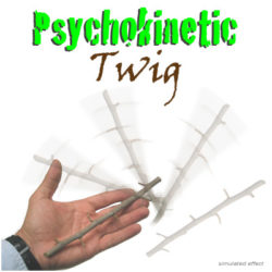 Psychokinetic Twig by Cesar Alonso