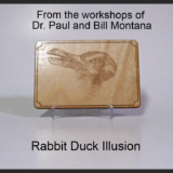 Duck Rabbit Illusion - Bill Montana & Dr. Paul