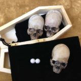 Eye-Gore Skeleton Shells - Roscoe