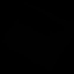 Black Silk 24 inch