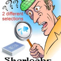 Sherlock's Vision