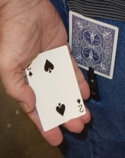 Gamblers Holdout Bug
