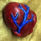 PK Heart