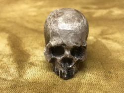 Catacomb PK Skull