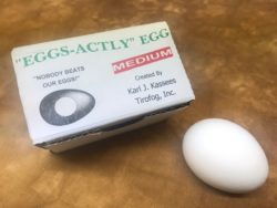 EGGS ACTLY EGG