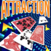 Attraction - Vinny Sagoo
