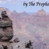 Dangerously Mental Card Magic - The Prophet - DOWNLOAD