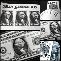 Silly George 3.0 - Robert Frederico