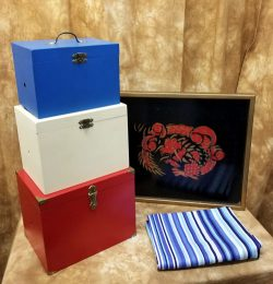 Tri Color Boxes and Mysterious Flight - Owen's Magic